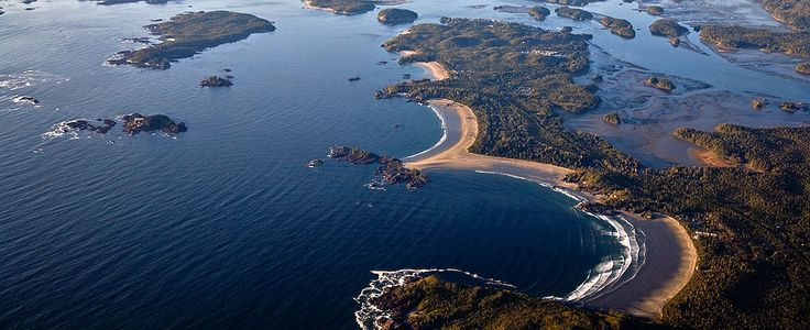 Another Tofino online guide
