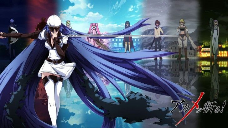 Esdeath Sword Akame ga Kill Night Raid Najenda Bulat Lubbock Mine Akame Tatsumi Leone Sheele Mushybilla 1920x1080