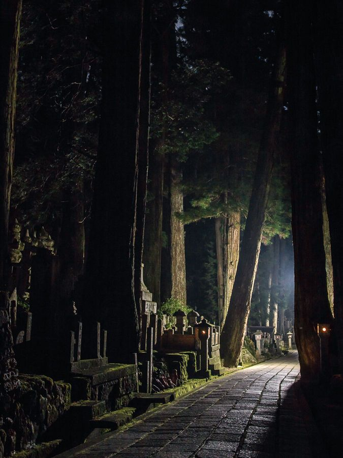 Koyasan #japan #wakayama - burial plots which you see all over at surprising places- an old burial site could be along a residential road