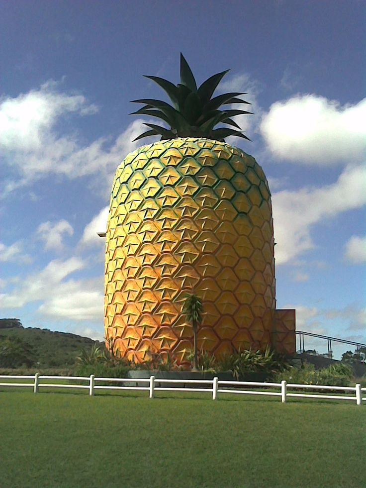 Big Pineapple in Bathurst, Eastern Cape. South Africa