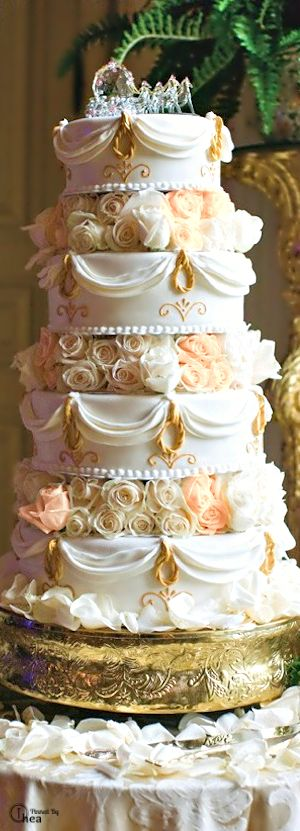 Elegant wedding cake. Love the layers of cake with pretty roses--and the Cinderella's coach cake topper is great too.