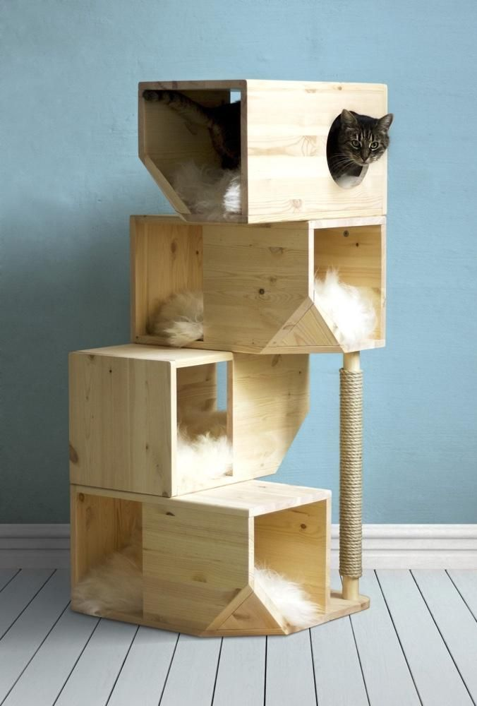 Designer Wood Cat Tower Designer Cat Tree Catissa Styletails
