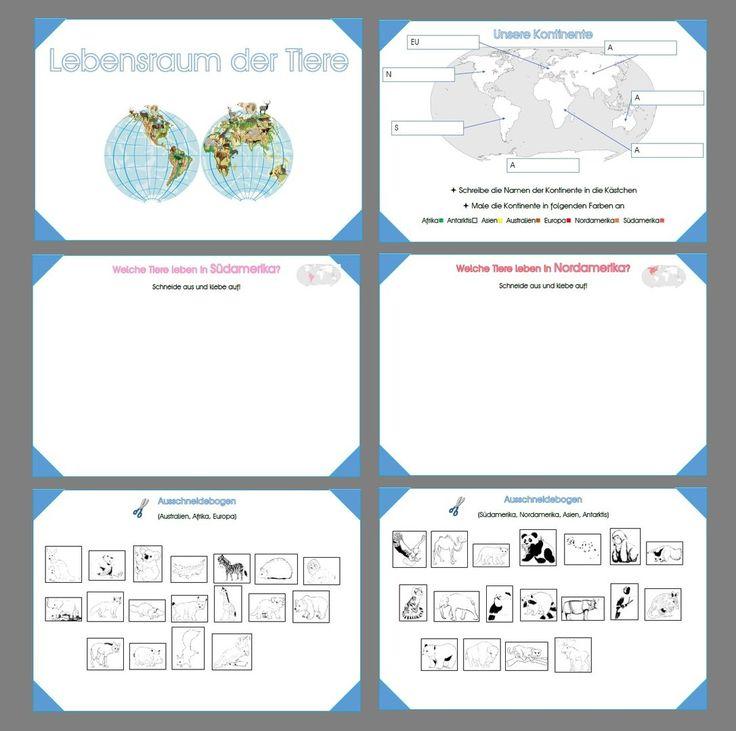 Charmant Sterne Lebenszyklus Arbeitsblatt Galerie - Super Lehrer ...