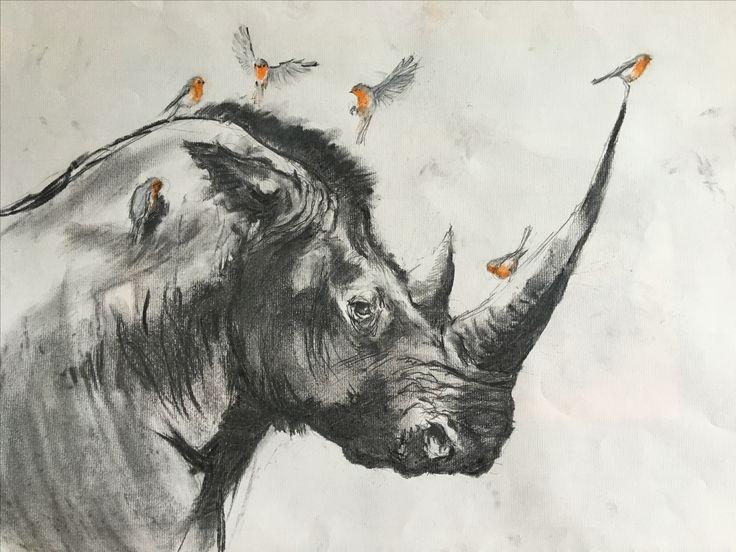Rhino. Pencil, charcoal.