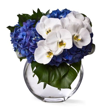 cobalt hydrandeas + white orchids    Google Image Result for http://www.floralartla.com/product/thumbnails/FA70_450x450.jpg