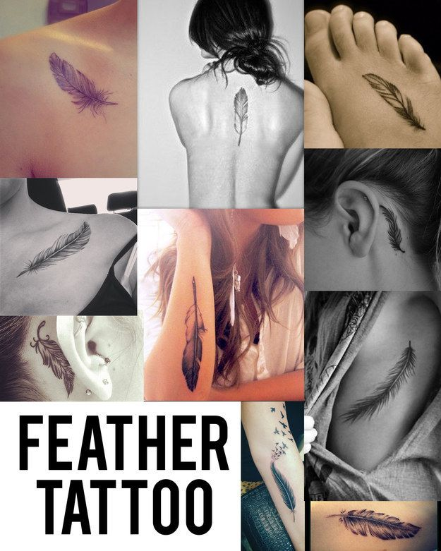 Feather   Community Post: Top Tattoo Trends Of 2014