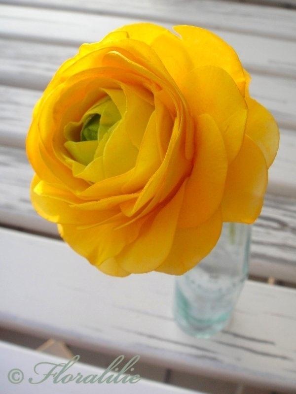 gumpaste ranunculus tutorial by Floralilie (CC)