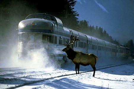 trans canadian railway   photo via rail s the canadian trans canada railway service currently ...