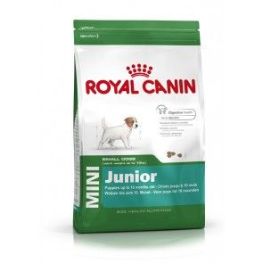 Croquettes Royal Canin : la marque de référence pour chiens et chats