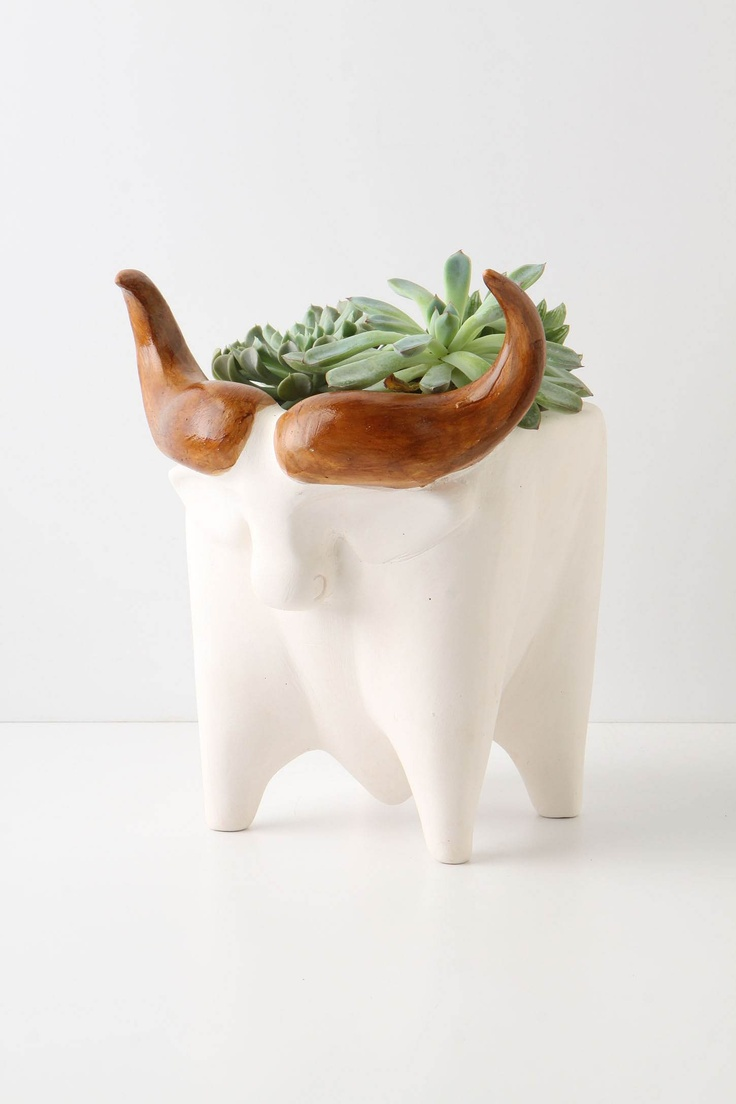 Bull planter.: Plants Can, Green Thumb, Succulents Planters, Little Houses, Ceramics Planters, Bull Planters, Ceramics Animal Planters, Animal Plants, Greensid Planters