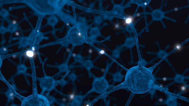 tratamiento positivo para esclerosis multiple: reiniciando tus sistema inmune por medio de radiacion y celulas madres  #curaesclerosismultiple #esclerosismultiples #celulamadreparaesclerosismultiples