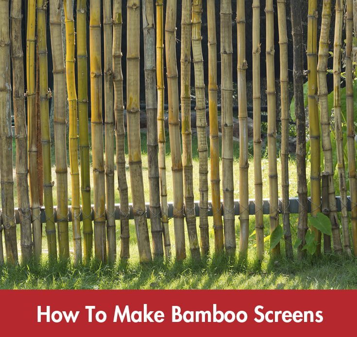 Add an exotic touch to your garden with this simple, yet striking bamboo screen. #Summer #DIY