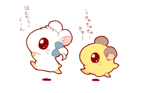 Hamtaro!!! Biiju and.. I forgot this little guy. :/ CHILDHOOD MOMENTS.