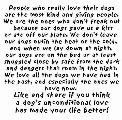 So dear:Doggie, Puppies, Friends, Quotes, Pets, Furbabies, True, Dogs Lovers, Animal