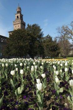 見らの最大の公園 センピオーネ公園 ミラノ旅行・観光のおすすめスポットを集めました。