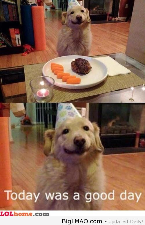 You can not not smile at this