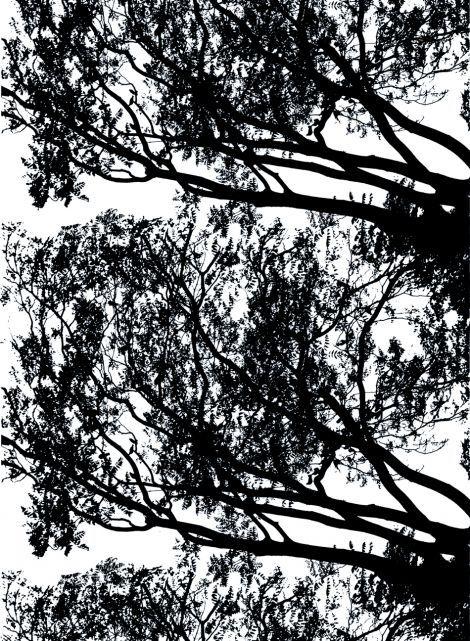 Tuuli- paksu puuvilla (valkoinen, musta) |Kankaat, Puuvillakankaat | Marimekko