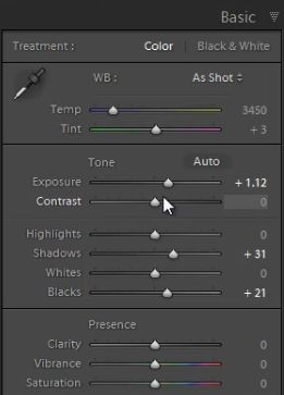 How to Reduce Noise in an Image Shot at a High ISO with the Detail Panel in Lightroom 4