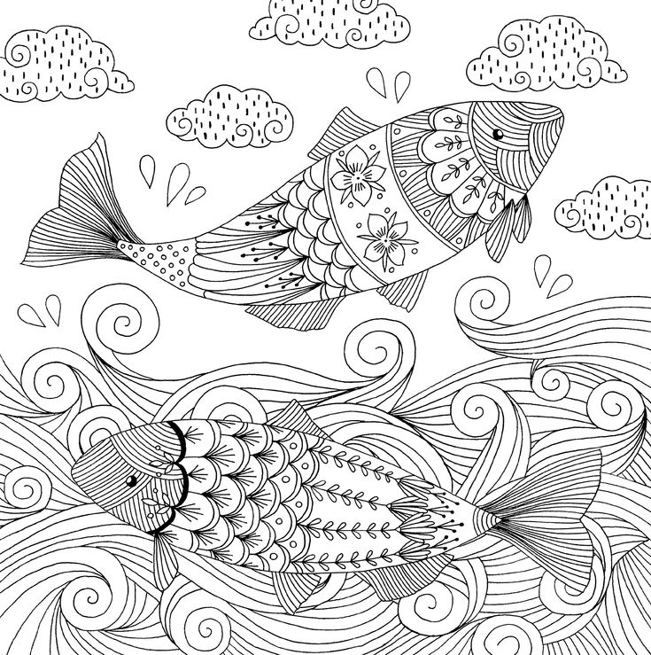 Amazon Follow Your Dreams Adult Coloring Book 31 Stress Relieving Designs