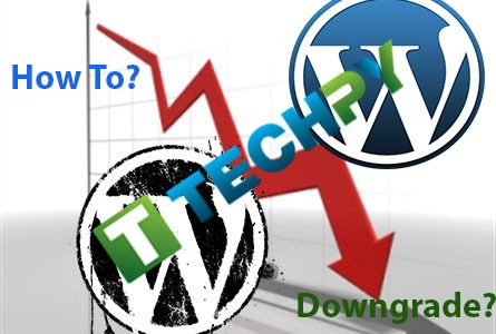 How to Downgrade WordPress site?