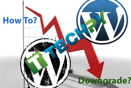 How to Downgrade WordPress site?