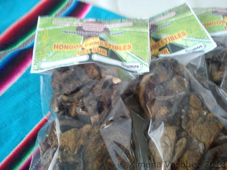 Hongos comestibles del Sur de la Asociación de productores y acopiadores Tinicachi, Puno.