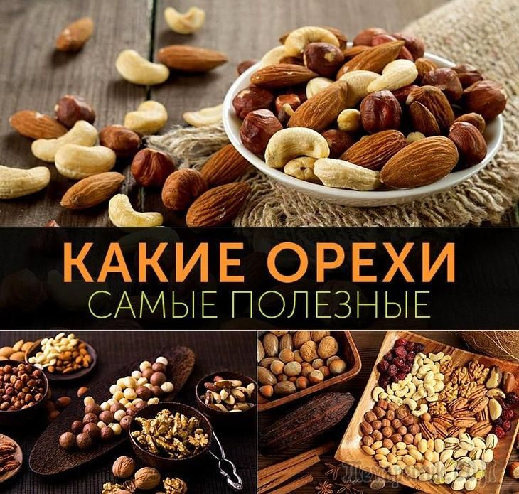 Разнообразие орешков из разных стран, представленных на полках продуктовых магазинов, может кого угодно сбить с толку.Чтобы такой проблемы не возникало, перед их покупкой следует узнать: какие орехи ...