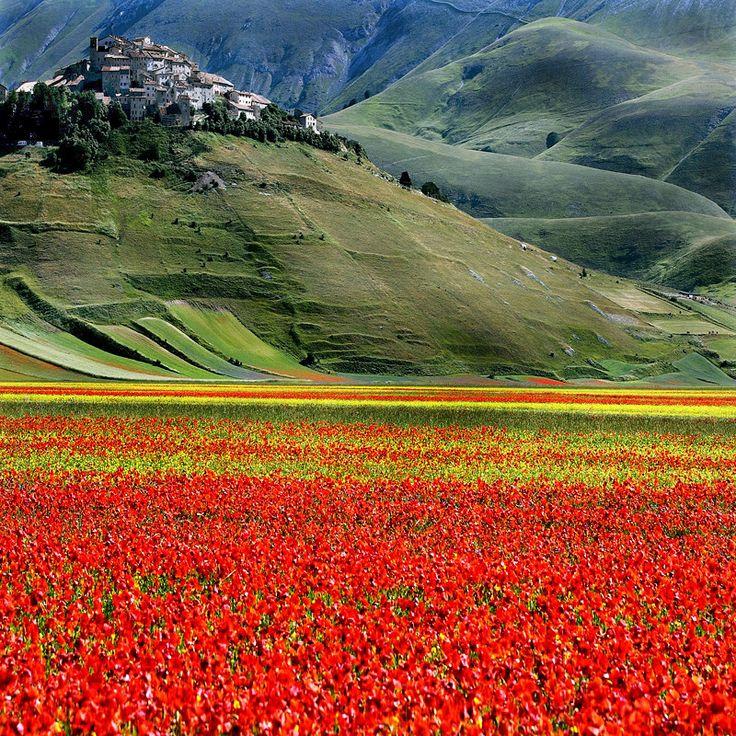 Castelluccio, Umbria, Italy... it looks like the poppy field in Wizard of Oz! <3