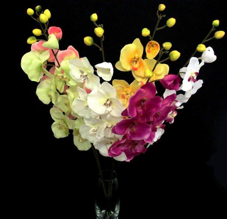 Orchidea szálak
