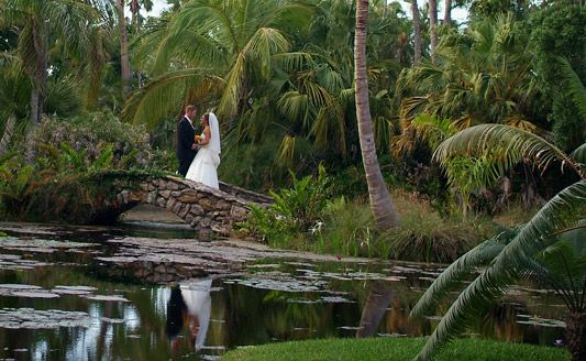 38 Best My Wedding Images On Pinterest Florida Wedding Venues Wedding Reception Venues And