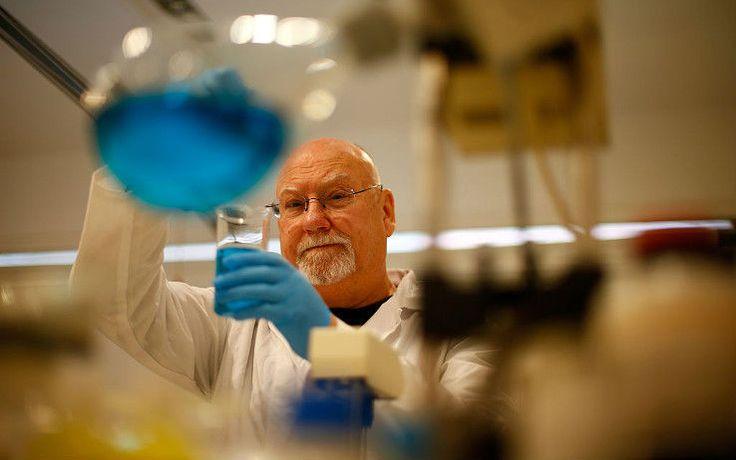 Creata la prima cellula staminale cardiaca sintetica