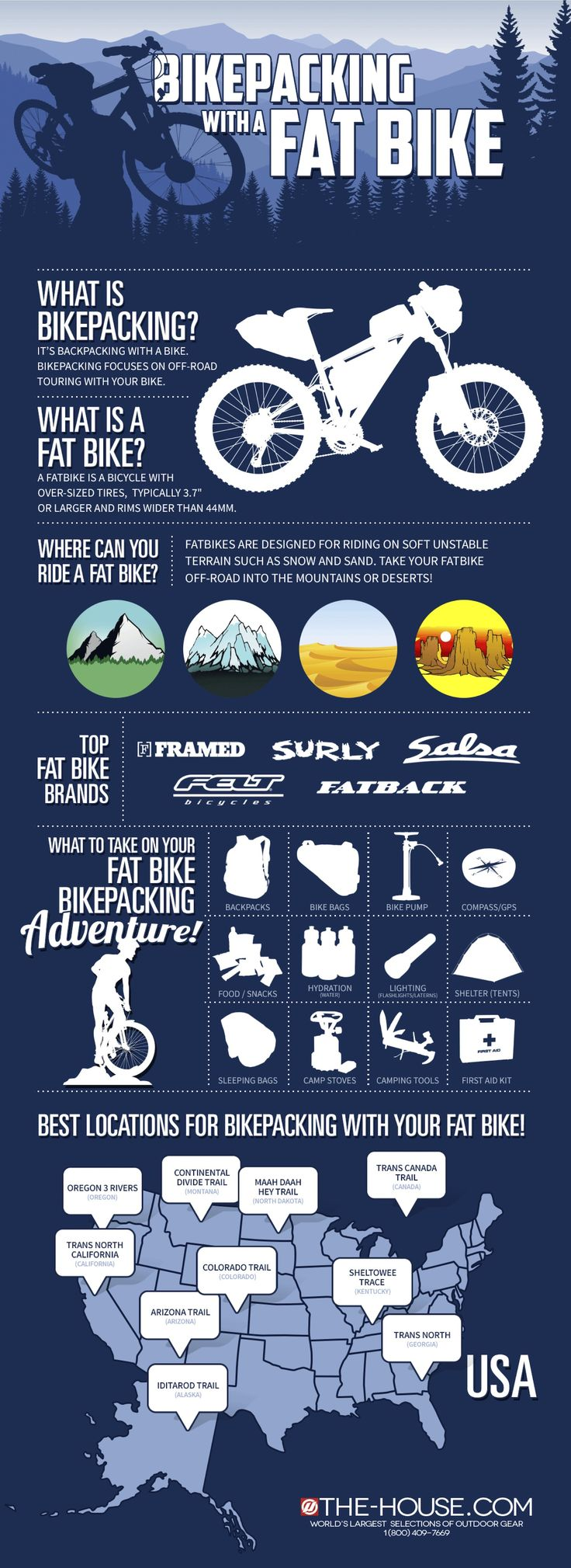 Mountain Bike vs Fat Bike. What's a difference?