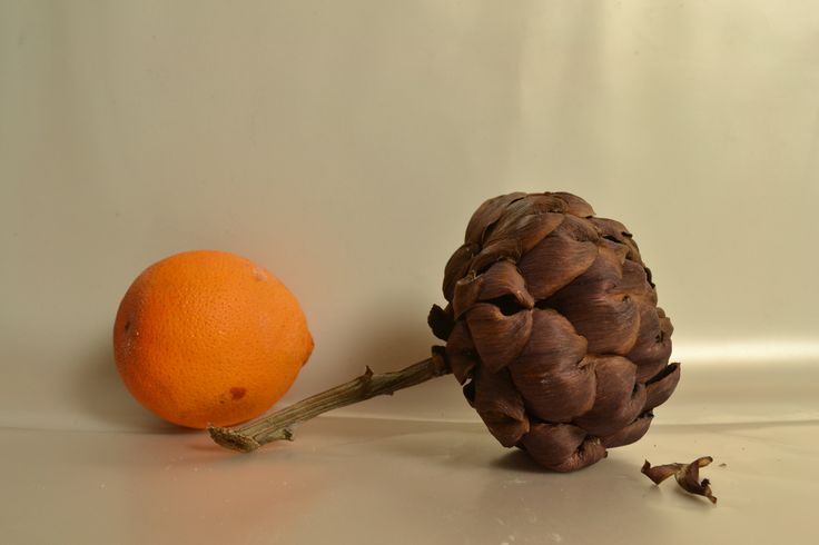 #Food #Largo dei Fiorentini, Rome  I did this composition of Still lIFE
