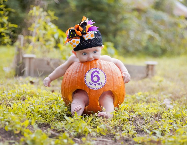 6 Month Baby in Pumpkin with Sticky Bellies! www.stickybellies.com Photo courtesy of Lyrical Lifestyle Photography