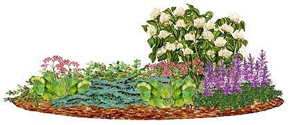 Кусты белой гортензии могут стать основой для неприхотливого миксбордера в романтическом стиле. Украсит романтику декоративная почвопокровная роза, восточный чабрец, цветущая живучка и стелющийся можжевельник