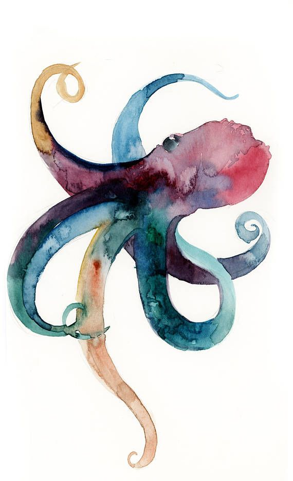 Octopus Watercolor Original Painting Sea Creatures Octopus