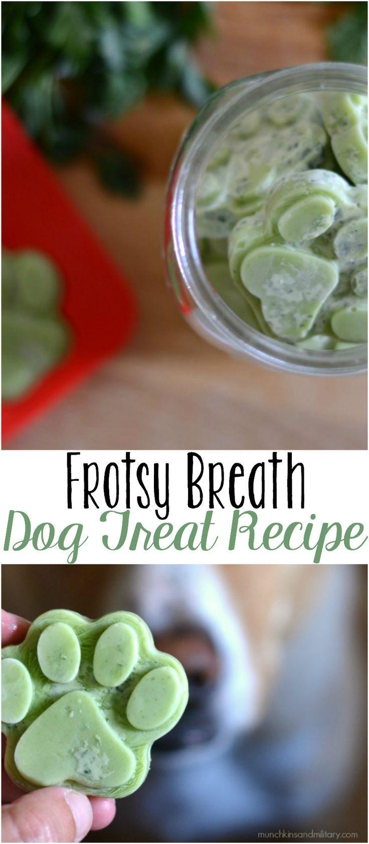Frosty Breath Dog Treats A frozen dog treat with coconut oil and herbs to improve you dog's breath! http://munchkinsandmilitary.com/2017/07/frosty-breath-dog-treats.html?utm_content=buffer6cb97&utm_medium=social&utm_source=pinterest.com&utm_campaign=buffer | Munchkins and Military&utm_content=Frosty Breath Dog Treats