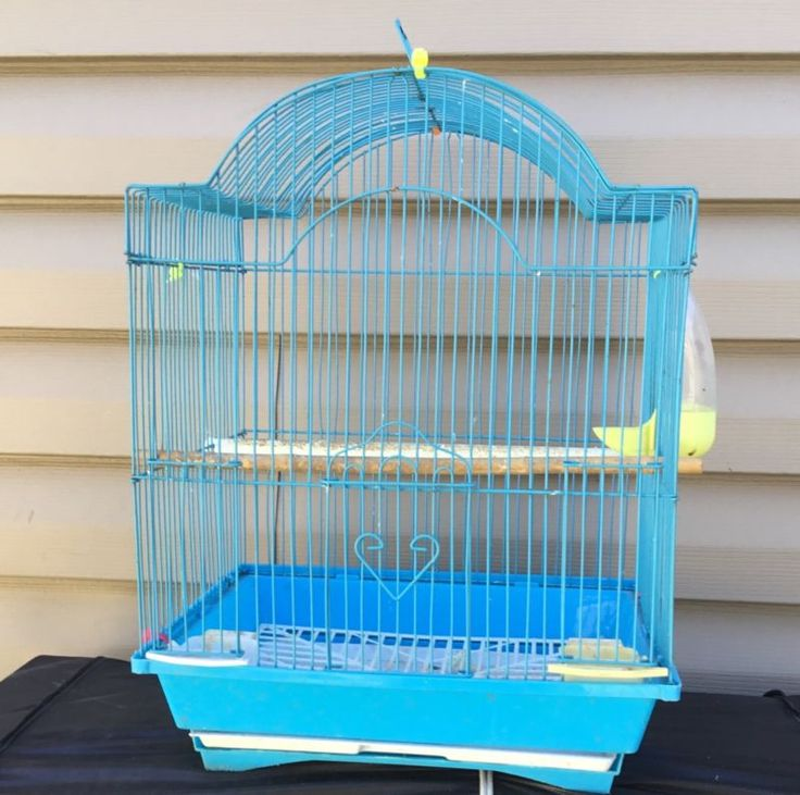 bird cages For Canary,finch And Small Birds. - http://pets.goshoppins.com/bird-supplies/bird-cages-for-canaryfinch-and-small-birds/