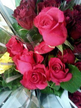 lidé milují růže (80 pieces)