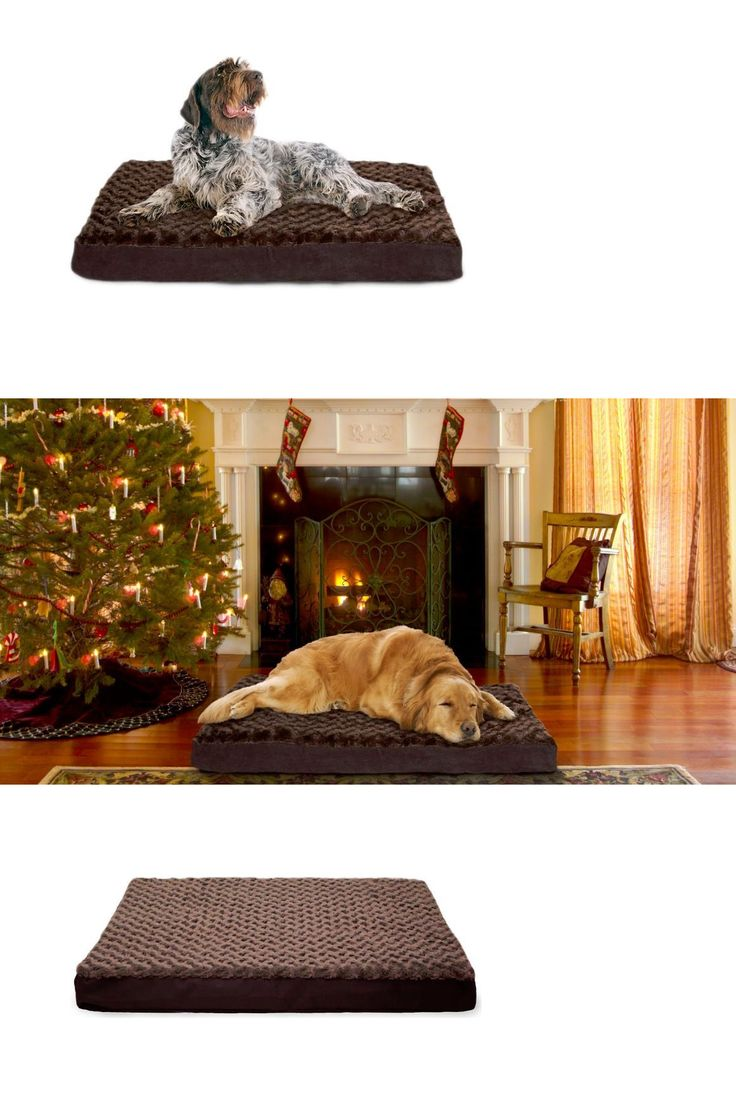 Beds 20744: Extra Large Xxl Dog Bed Big Washable Cover Brown Orthopedic Faux Fur Cozy -> BUY IT NOW ONLY: $45.99 on eBay!