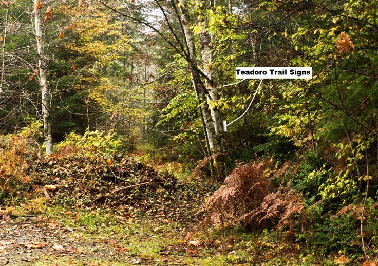 http://www.valleyoftrails.ca/sites/default/files/the-trails/photos/Teodoro%20Trailhead2.jpg