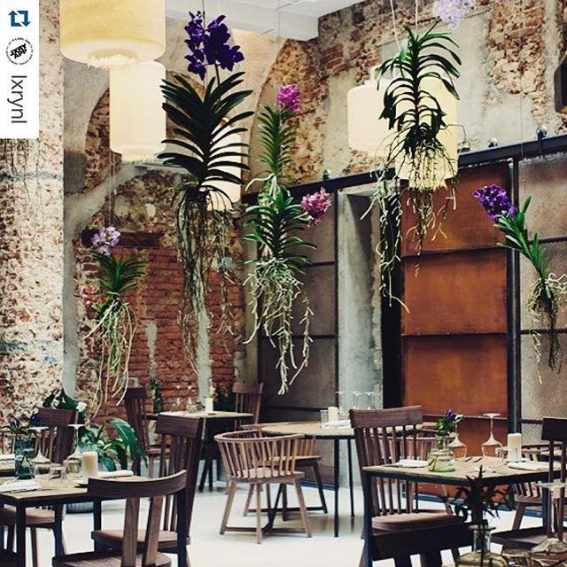 La Menagere Firenze (@la_menagere) • Foto e video di Instagram