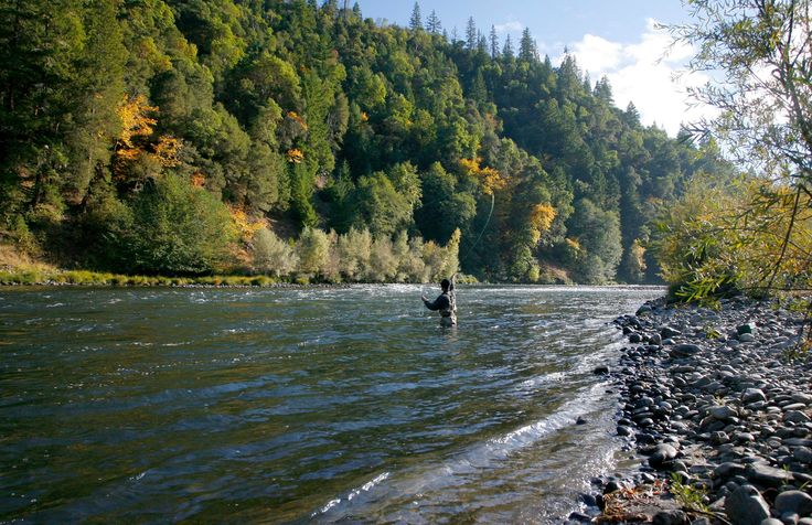 Rogue river oregon a pleasant green oasis awaits you in for Rogue river oregon fishing