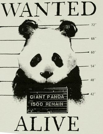 Reward: your grandchildren and great grandchildren will know what a panda is!