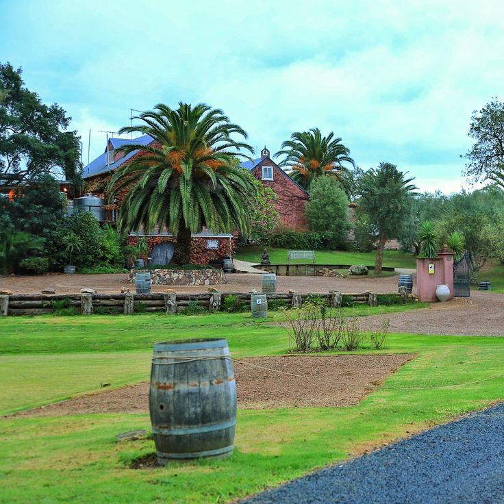 Beautiful scenery on the way to Stonyridge Vineyard #beautiful #journey #stonyridge #vineyard #green #newzealand #nz #landscape #view #scenery #beauty #nature #traveling #newzealand #NZ #NZMustdo #holiday #trip #nice #awesome #calm #happy #luxurynz #nz #nzmustdo #newzealand #vacation #travel #photooftheday