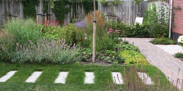 Een 'natuurlijke, levendige tuin met variatie in ruimte, gebruik en weelderige beplanting', dat was de wens van de opdrachtgever. Borders met vaste planten en siergrassen, die vlinders en bijen aantrekken zorgen voor kleur en levendigheid, in elk seizoen. Leibomen langs de rand zorgen voor privacy; losse bomen (fruit en loof) voor verticaliteit en gefilterd zonlicht. …