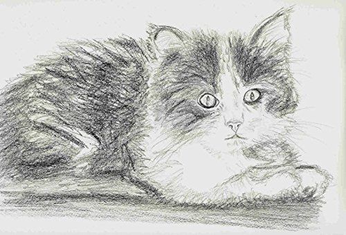 Beautiful Custom made art of your pet. Art by T Pence. Mr Pence can work his magic with a pencil and create a wonderful rendition of your pet. Just contact him for details and provide a photo of your loved one!!.
