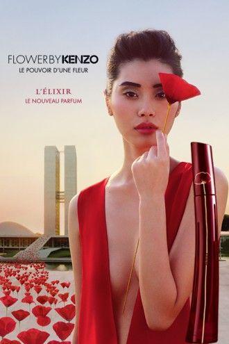 Le coquelicot n'a pas d'odeur, Kenzo a créé son parfum. Retrouvez l'histoire d'une fleur emblématique