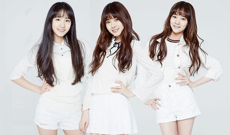 SM Introduces Its Next Era New Girl Group :  SR15G Profile #hina #heyrin #koeun #jeesu #lami #smrookies #sr15b #sr15g #twice #2015debut #smrookiesgirls