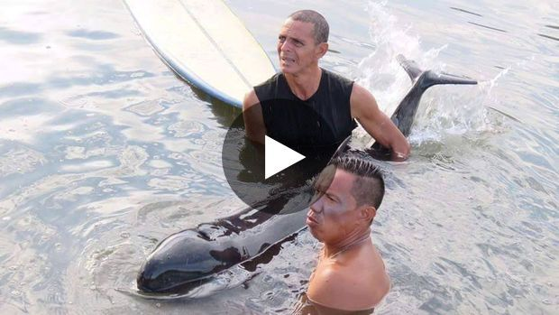Des surfeurs viennent en aide à un petit globicéphale au Costa Rica Des surfeurs au Costa Rica sont récemment venus en aide à un petit globicéphale retrouvé échoué dans...